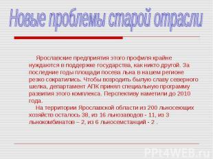 Новые проблемы старой отрасли Ярославские предприятия этого профиля крайне нужда