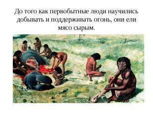 До того как первобытные люди научились добывать и поддерживать огонь, они ели мя