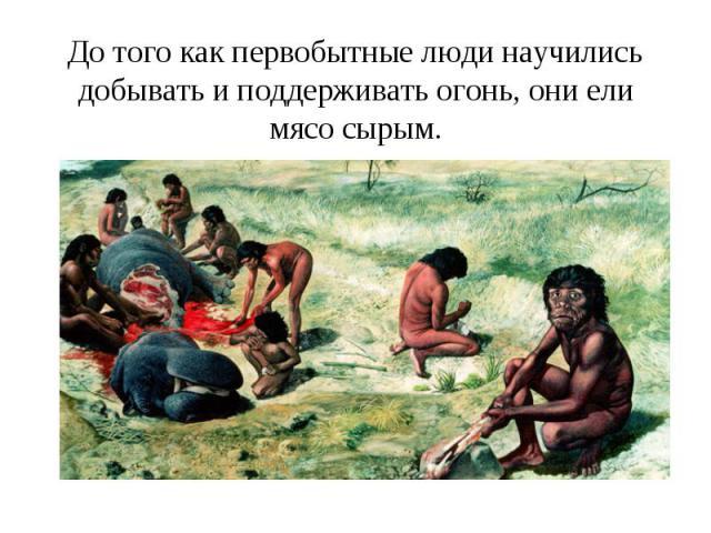 До того как первобытные люди научились добывать и поддерживать огонь, они ели мясо сырым.