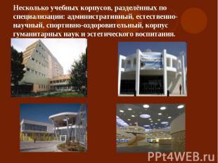 Несколько учебных корпусов, разделённых по специализации: административный, есте