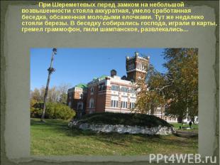 При Шереметевых перед замком на небольшой возвышенности стояла аккуратная, умело