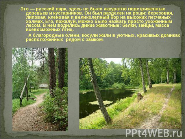 Это — русский парк, здесь не было аккуратно подстриженных деревьев и кустарников. Он был разделен на рощи: березовая, липовая, кленовая и великолепный бор на высоких песчаных холмах. Его, пожалуй, можно было назвать просто ухоженным лесом. В нем вод…