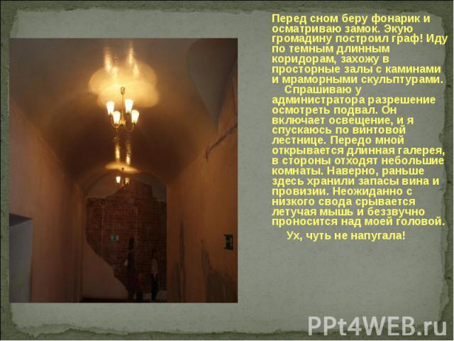 Перед сном беру фонарик и осматриваю замок. Экую громадину построил граф! Иду по темным длинным коридорам, захожу в просторные залы с каминами и мраморными скульптурами. Спрашиваю у администратора разрешение осмотреть подвал. Он включает освещение, …