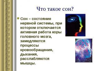 Что такое сон? Сон – состояние нервной системы, при котором отключается активная