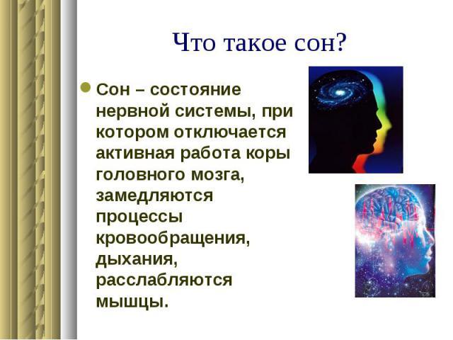 Что такое сон? Сон – состояние нервной системы, при котором отключается активная работа коры головного мозга, замедляются процессы кровообращения, дыхания, расслабляются мышцы.