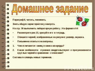 Домашнее задание Параграф 8, читать, понимать.Знать общую характеристику наизуст