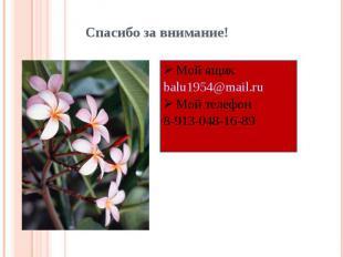 Спасибо за внимание! Мой ящикbalu1954@mail.ruМой телефон8-913-048-16-89