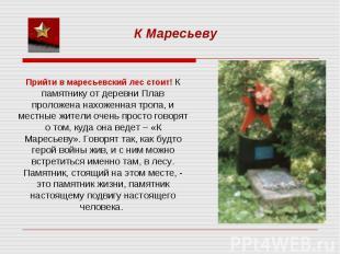 К МаресьевуПрийти в маресьевский лес стоит! К памятнику от деревни Плав проложен
