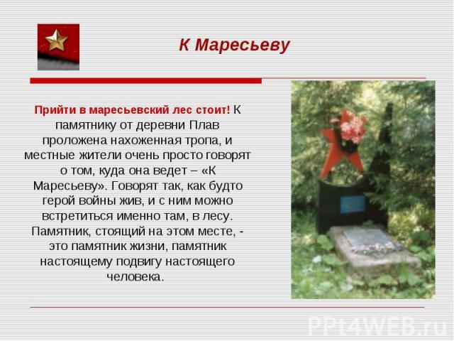 К МаресьевуПрийти в маресьевский лес стоит! К памятнику от деревни Плав проложена нахоженная тропа, и местные жители очень просто говорят о том, куда она ведет – «К Маресьеву». Говорят так, как будто герой войны жив, и с ним можно встретиться именно…
