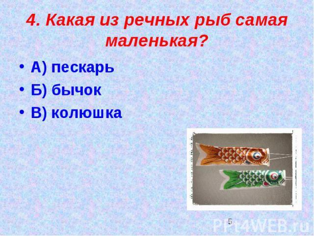 4. Какая из речных рыб самая маленькая?А) пескарьБ) бычокВ) колюшка