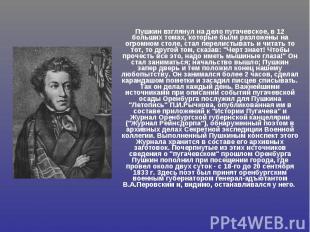 Пушкин взглянул на дело пугачевское, в 12 больших томах, которые были разложены
