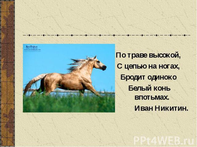 По траве высокой, С цепью на ногах, Бродит одиноко Белый конь впотьмах. Иван Никитин.