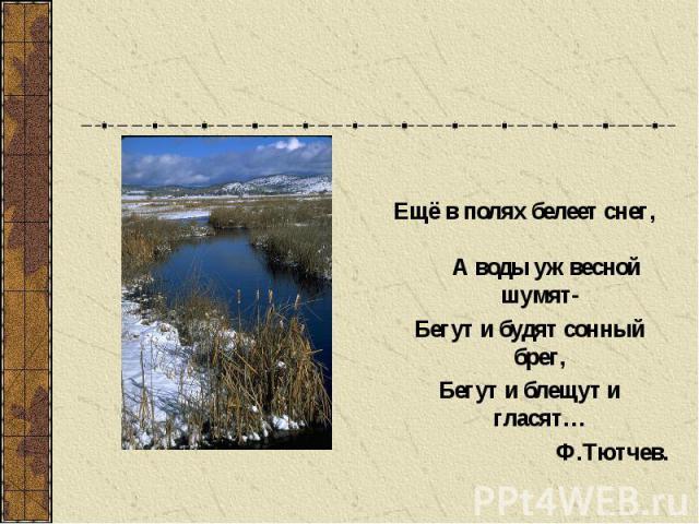 Ещё в полях белеет снег, А воды уж весной шумят- Бегут и будят сонный брег, Бегут и блещут и гласят… Ф.Тютчев.