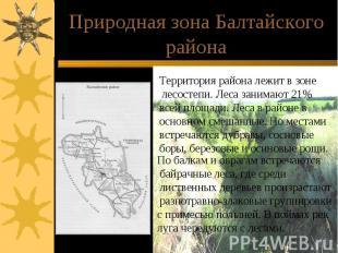 Природная зона Балтайского района Территория района лежит в зоне лесостепи. Леса