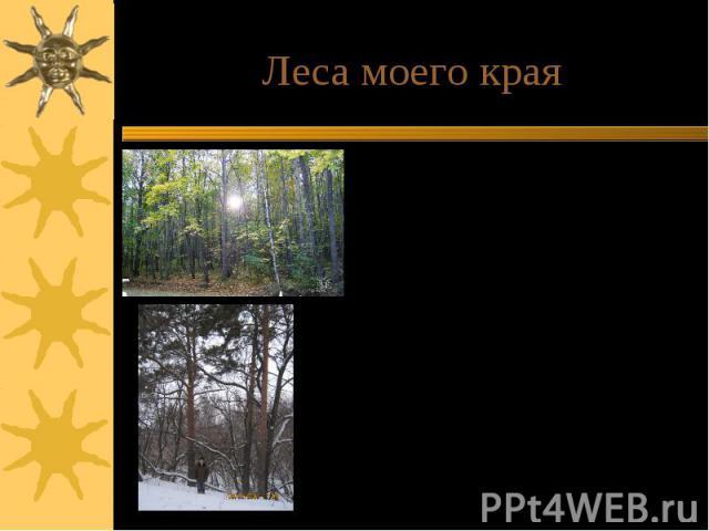 Леса моего краяОсновной породой является дуб. Произрастают также другие широко-лиственные породы: клен, липа, ясень, береза, осина, тополь, ольха, вяз. Средний возраст лесных пород около 50 лет. Сохранились деревья-старожилы- сосны, примерно трехсот…