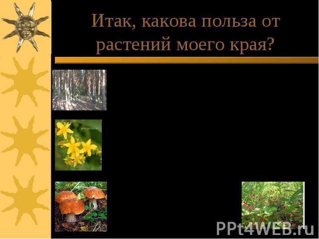 Итак, какова польза от растений моего края?Лес обогащает воздух кислородом.Дуб, сосна, липа являются прекрасным строительным материалом.Лес является домом для многих животных.Огромна польза лекарственных растений. Например,зверобой, который на Руси …