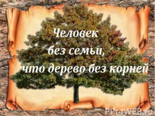 Человек без семьи, что дерево без корней