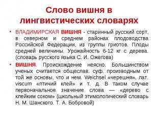 Слово вишня в лингвистических словаряхВЛАДИМИРСКАЯ ВИШНЯ - старинный русский сор