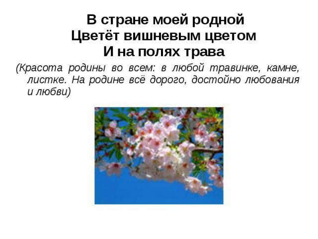 В стране моей роднойЦветёт вишневым цветомИ на полях трава(Красота родины во всем: в любой травинке, камне, листке. На родине всё дорого, достойно любования и любви)