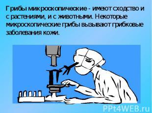 Грибы микроскопические - имеют сходство и с растениями, и с животными. Некоторые