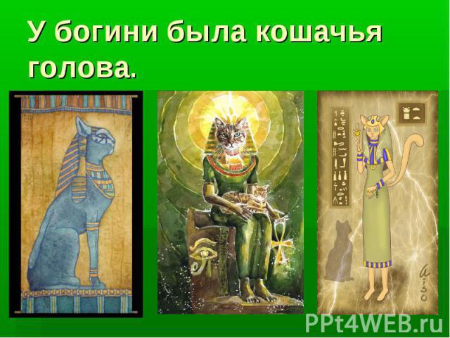 У богини была кошачья голова.
