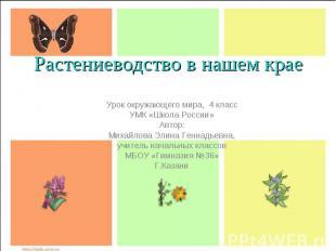 Растениеводство в нашем крае Урок окружающего мира, 4 класс УМК «Школа России» А