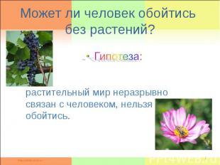 Может ли человек обойтись без растений ? Гипотеза: растительный мир неразрывно с