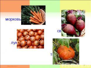морковь свёкла лук тыква