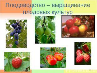 Плодоводство – выращивание плодовых культур