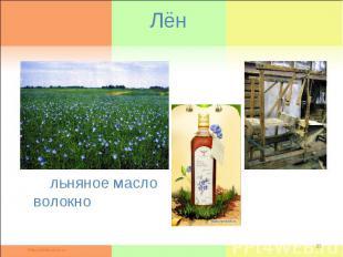 Лён льняное масло волокно