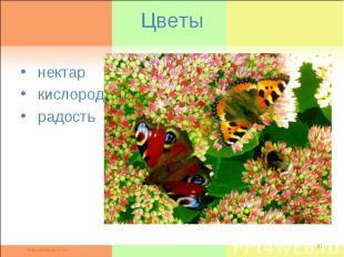 Цветы нектар кислород радость