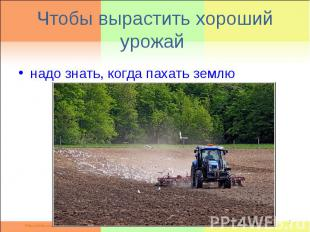 Чтобы вырастить хороший урожай надо знать, когда пахать землю