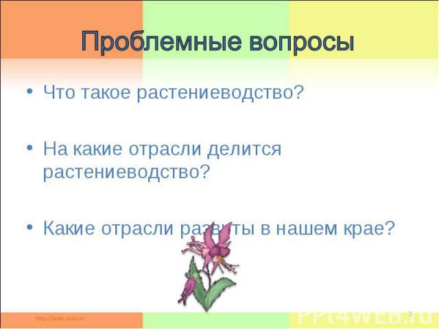Проблемные вопросы Что такое растениеводство? На какие отрасли делится растениеводство? Какие отрасли развиты в нашем крае?