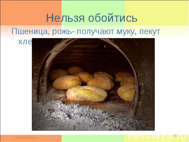 Нельзя обойтисьПшеница, рожь- получают муку, пекут хлеб.