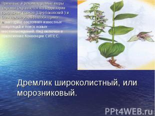 Принятые и рекомендуемые меры охраны Охраняется на территории природных парков (