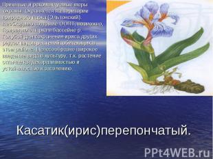 Принятые и рекомендуемые меры охраны. Охраняется на територии природного парка (