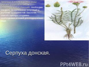 Принятые и рекомендуемые меры охраны. (Щербаковский ) и (Нижнехоперск) и (Донско