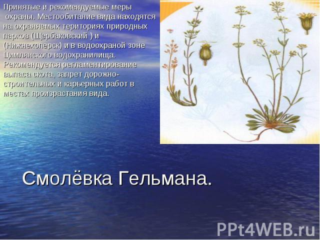 Принятые и рекомендуемые меры охраны. Местообитание вида находятся на охраняемых териториях природных парков (Щербаковский ) и (Нижнехоперск) и в водоохраной зоне Цимлянского водохранилища. Рекомендуется регламентирование выпаса скота, запрет дорожн…