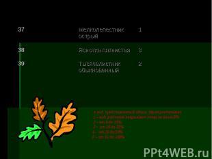+ вид, представленный одним, двумя растениями 1 – вид, растения покрывают почву