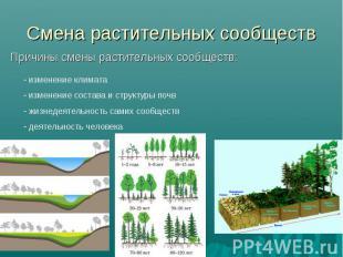 Смена растительных сообществ Причины смены растительных сообществ: изменение кли