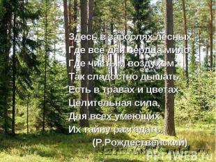 Здесь в зарослях лесных, Где все для сердца мило, Где чистым воздухом Так сладос