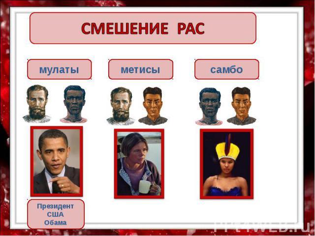 СМЕШЕНИЕ РАС мулаты метисы самбо Президент США Обама