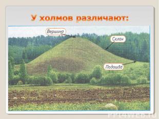У холмов различают: