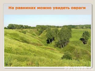 На равнинах можно увидеть овраги