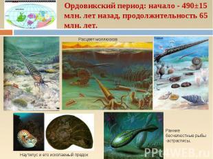 Ордовикский период: начало - 490±15 млн. лет назад, продолжительность 65 млн. ле