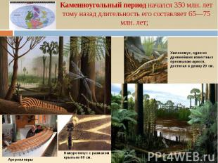 Каменноугольный период начался 350 млн. лет тому назад длительность его составля