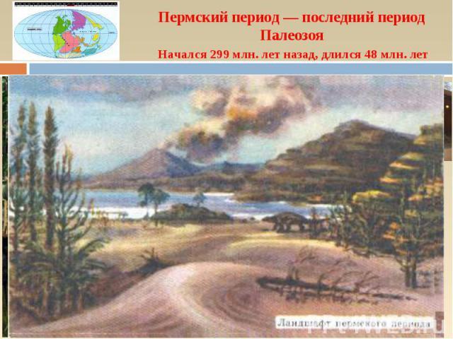 Пермский период — последний период Палеозоя Начался 299 млн. лет назад, длился 48 млн. лет