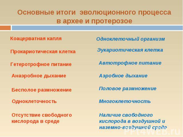 Основные итоги эволюционного процесса в архее и протерозое