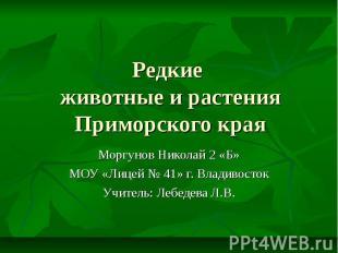 Редкие животные и растения Приморского края Моргунов Николай 2 «Б» МОУ «Лицей №