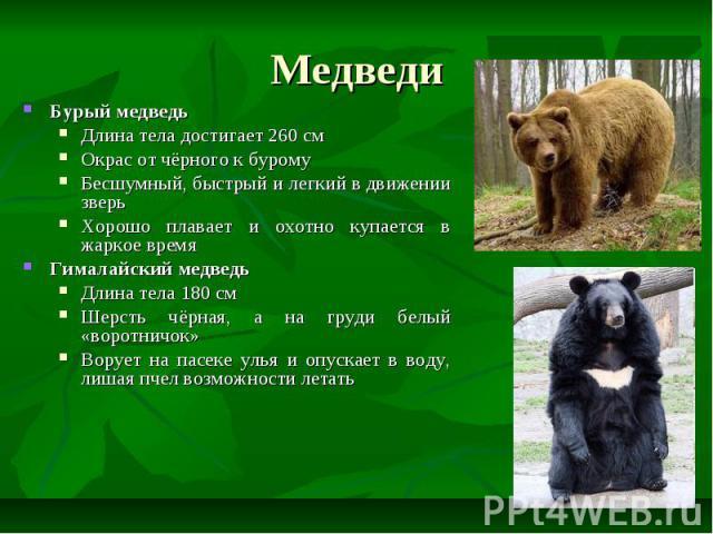 Медведи Бурый медведь Длина тела достигает 260 см Окрас от чёрного к бурому Бесшумный, быстрый и легкий в движении зверь Хорошо плавает и охотно купается в жаркое время Гималайский медведь Длина тела 180 см Шерсть чёрная, а на груди белый «воротничо…